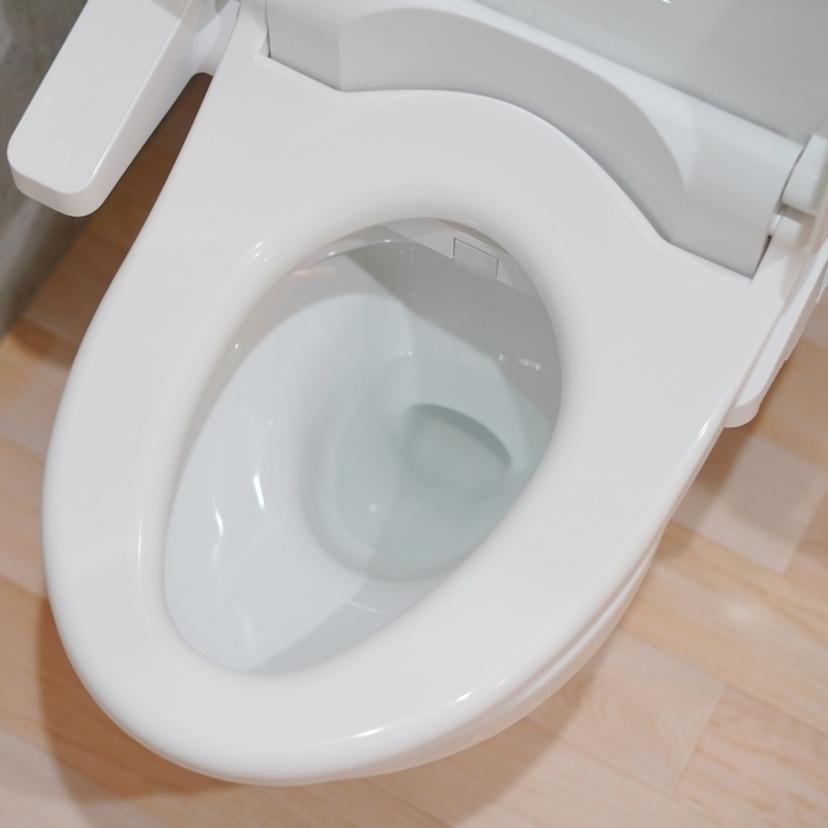 ゴキブリはトイレに流して大丈夫?その他の捨て方・処分方法も
