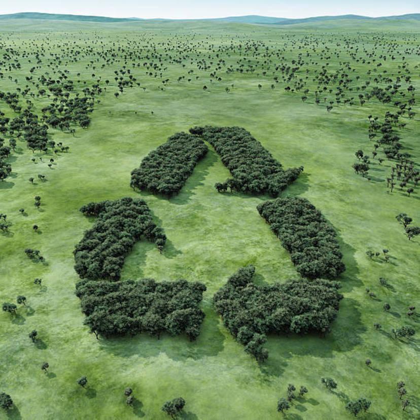 家電リサイクル法の対象と料金は?罰則・罰金はある?