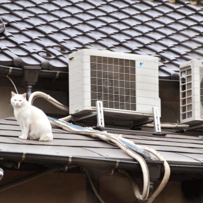 エアコンは自分で取り外せる?ガス抜きするための12ステップ