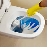 トイレ掃除用洗剤を選ぶコツ5つと、おすすめ洗剤9選