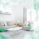部屋がカビ臭い…原因と5つの対策と4つの家のカビ防止グッズ