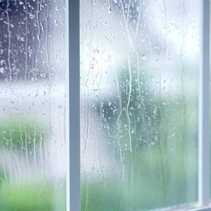 湿気を取る簡単ですぐできる16の方法