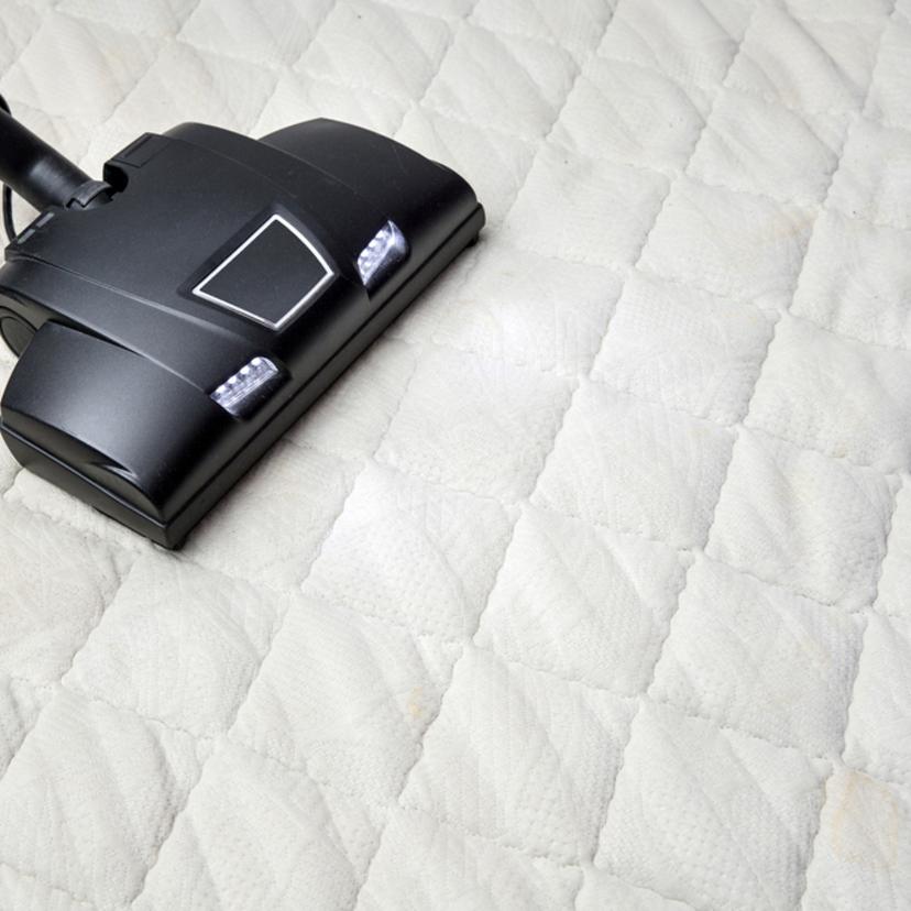 布団のダニの駆除対策方法6つ注意点4つ!掃除機やドライヤーは有効?