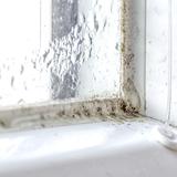 窓のカビ掃除方法4つと予防対策3つ!カビキラーや重曹が有効?