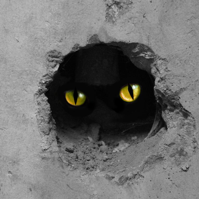 猫は撃退できる?猫よけに効果的な方法13選