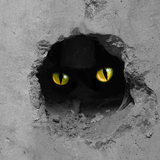 猫を撃退する効果的な方法15選!スプレー・超音波・エアガンは?