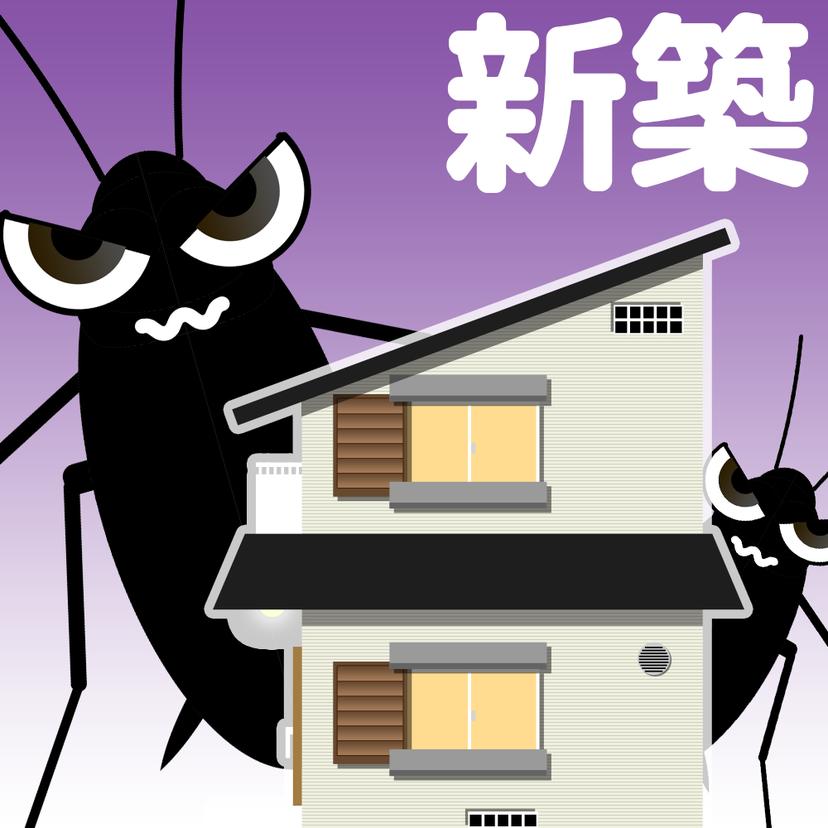 新築にゴキブリが発生する原因7つ!侵入経路と対策8選