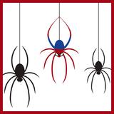 家に出る蜘蛛の種類9つと見分け方!殺さない?対策は?