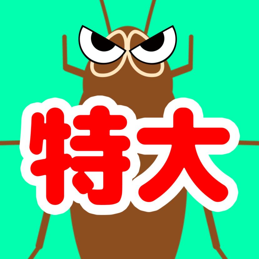 ワモンゴキブリの生態の特徴8つと駆除方法3つ!飛ぶ?でかい?