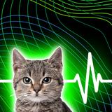 猫よけ超音波グッズのおすすめ比較ランキング10選!ソーラー・電池式など