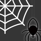 蜘蛛の巣が張る原因と対策6つ!スプレーの作り方も解説