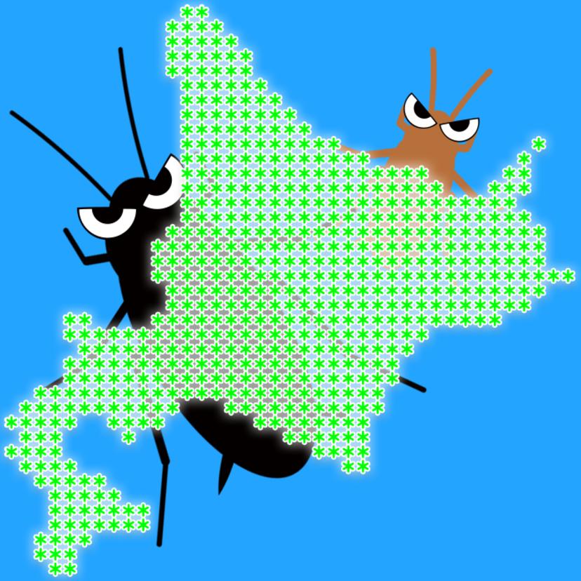 北海道にゴキブリがいない理由といる場合の種類と対策!似てる代わりの虫?