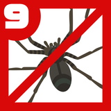 クモ対策9つ!庭やベランダ、家の蜘蛛を追い払うには?