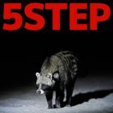 ハクビシンの捕獲方法5ステップ!捕獲に許可や資格は必要?