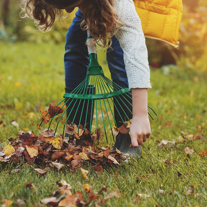 庭の簡単掃除・お手入れ方法のコツ8個!道具や時期は?