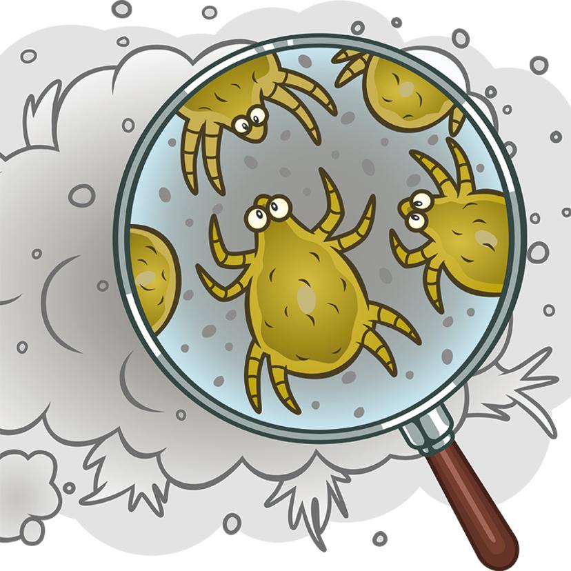 ダニ対策8選!布団・ベッド・マットレス・畳は?繁殖条件や死滅温度は?