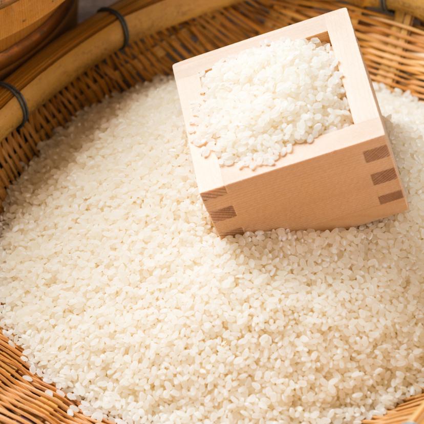 お米に虫が発生する理由と対策方法5個!保存は冷蔵庫?