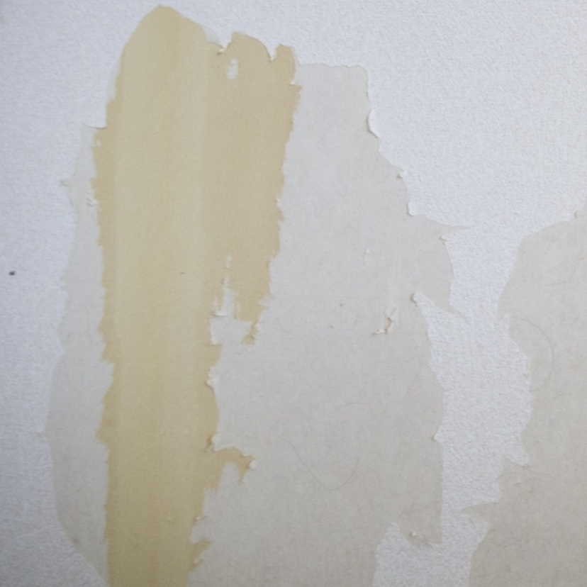 剥がれた壁紙の補修する方法6ステップ!予防法やおすすめアイテムも