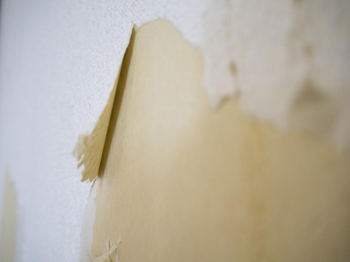 剥がれた壁紙の補修する方法6ステップ 予防法やおすすめアイテムも タスクル